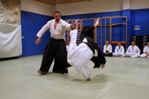 aikido sevnica 10