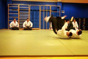 aikido sevnica 2
